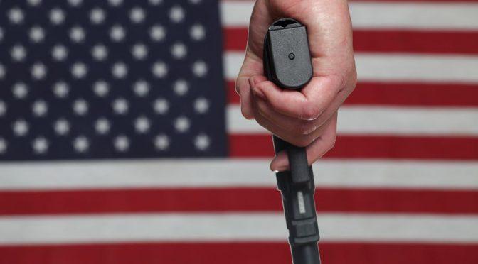 枪口下的美国: 左派的迷思和右派的固执